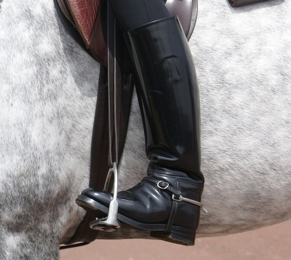 fa42f627e34 Best Riding Boots in 2019 - Buyer's Guide and Review