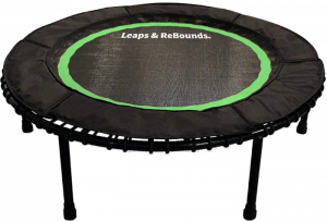 Leaps and ReBounds Bungee Rebounder